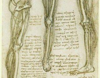 Occhio, malocchio…anca caviglia e ginocchio!